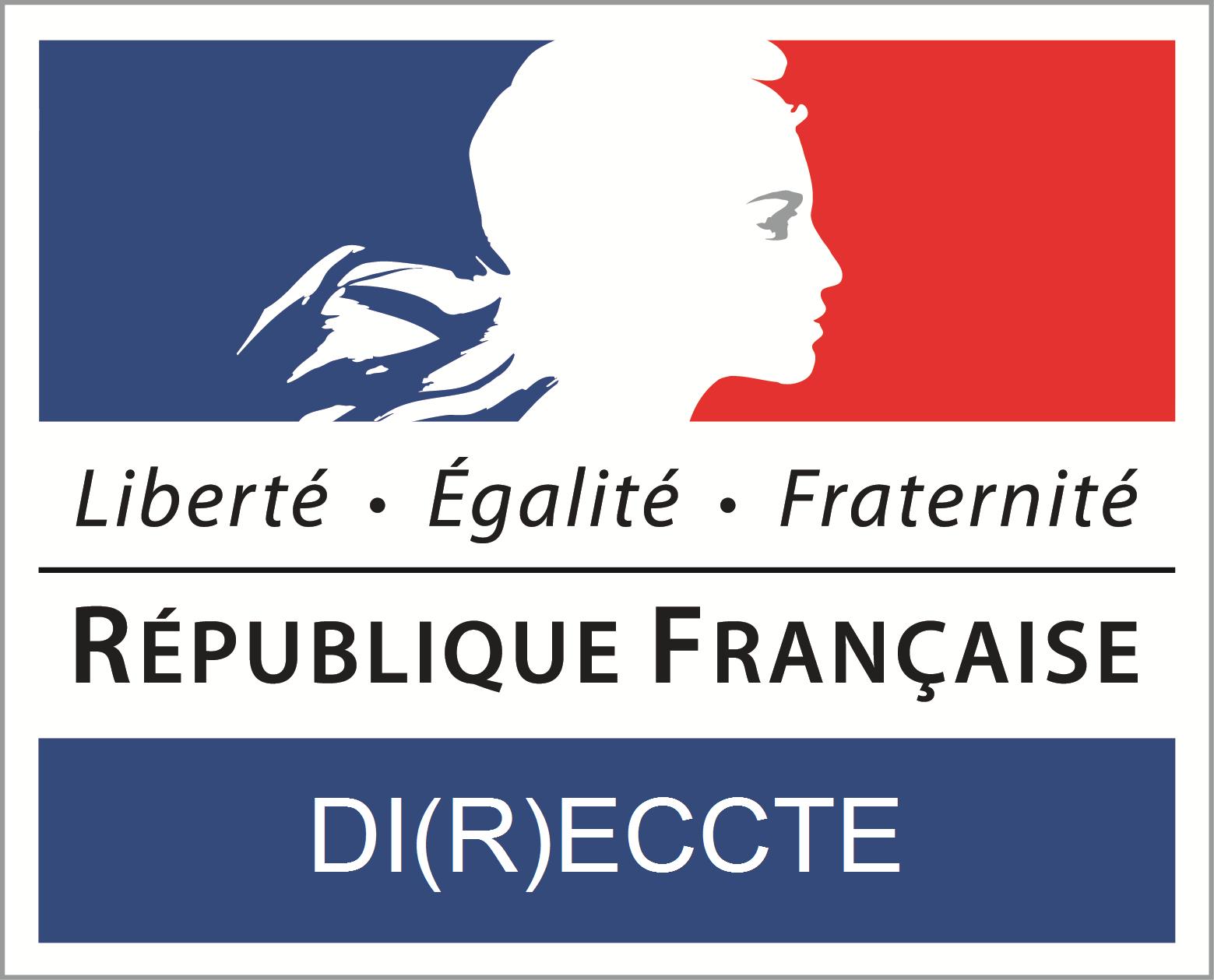 DI(R)ECCTE